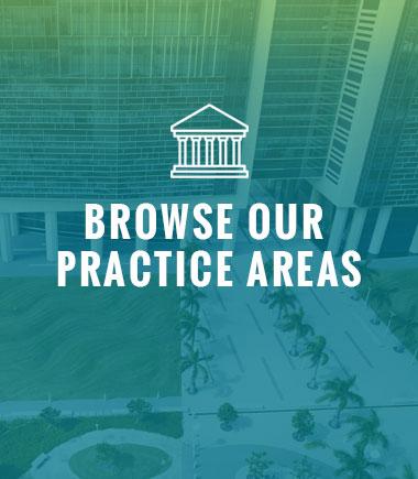 Adam K. Goodman Law Practice Areas Button
